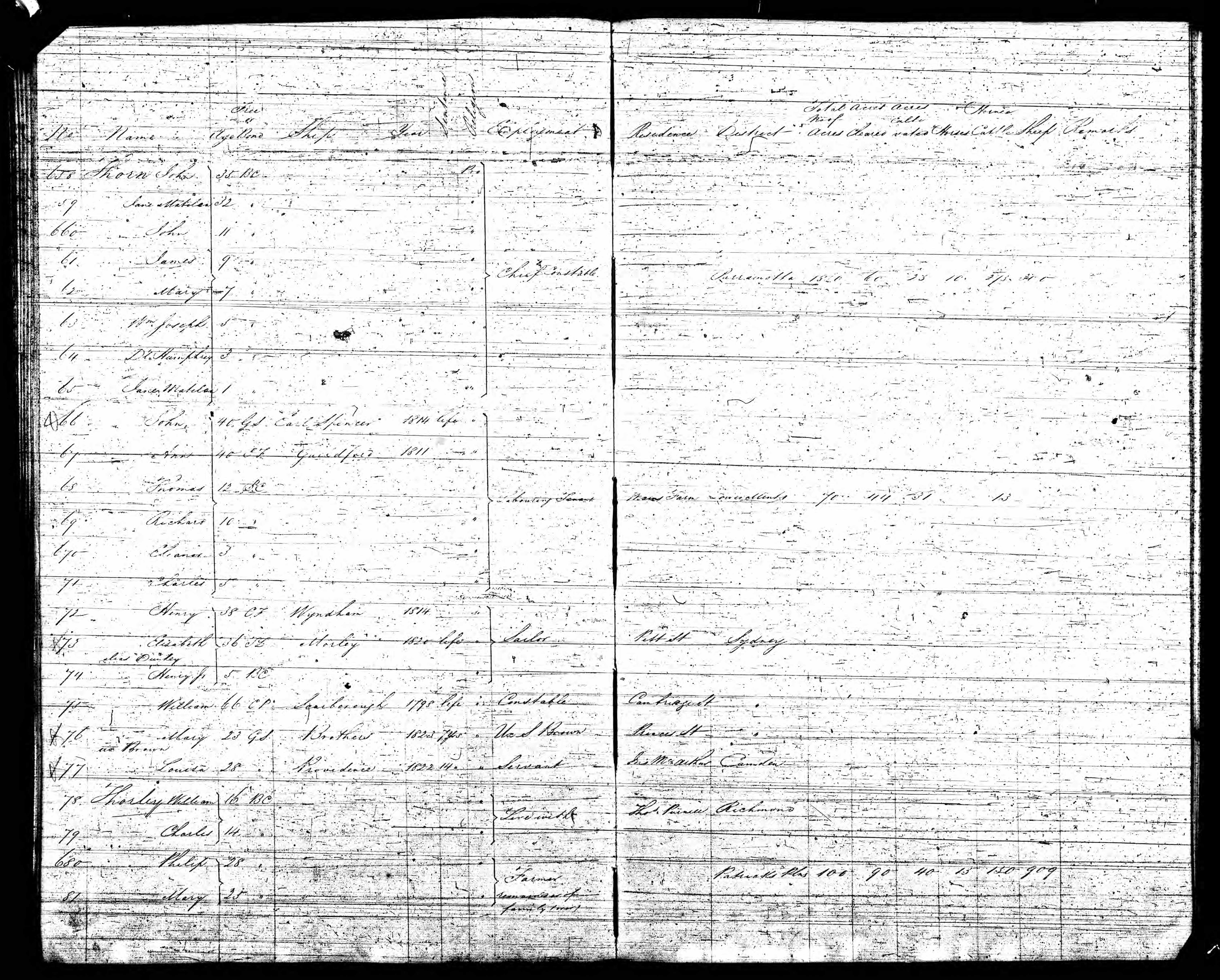1828 Census of the Colony of New South Wales, - Philip and Mary Thorley and family.